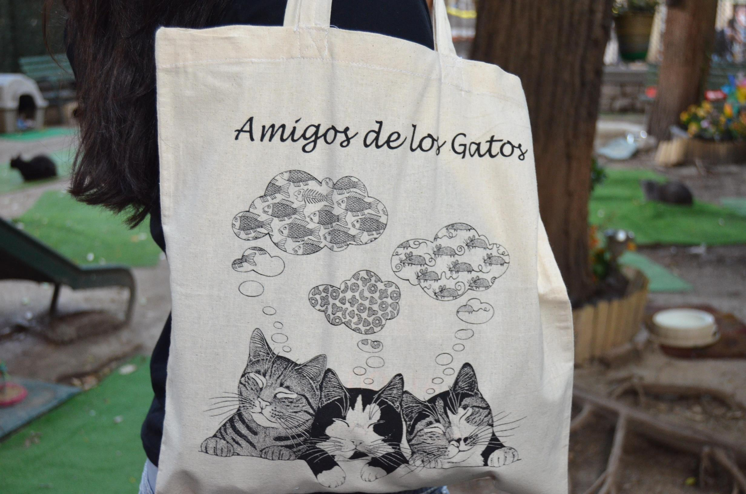 Bossa, tres gats somiant Image